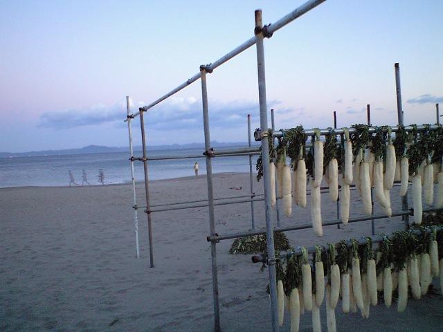 カッタクリ漁師の休日